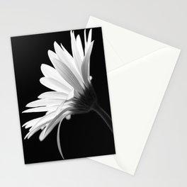 Flower BW Stationery Cards