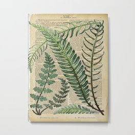 Book Art Page Botanical Leaves Metal Print