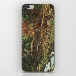 Whitetil Deer Doe & Buck by Waterfall iPhone Skin