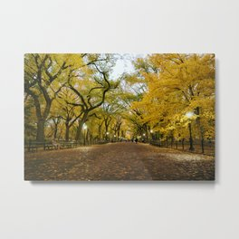 Central Park New York City Metal Print