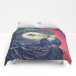 Gray Parrot Comforters