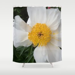 White Beauty by Teresa Thompson Shower Curtain