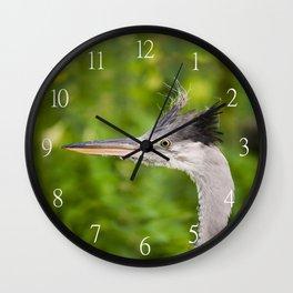 Young orphaned Ardea cinerea the grey heron Wall Clock