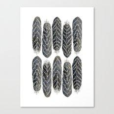Black Stripe Feathers Canvas Print