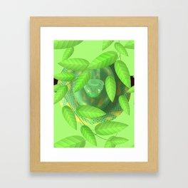 Bush viper Framed Art Print