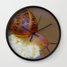 Snail on a Flower Wall Clock