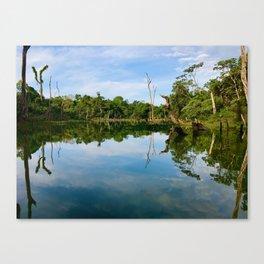 Stunning Reflections Canvas Print