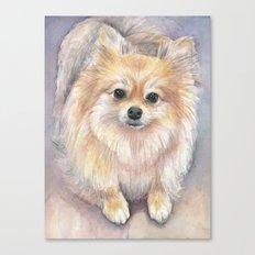 Pomeranian Watercolor Pom Puppy Dog Painting Canvas Print