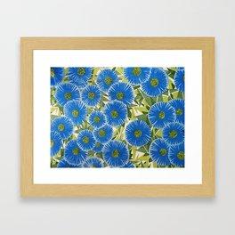 Atomic Daisies Framed Art Print