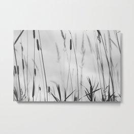 Prairie Silhouette Metal Print