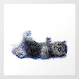 cat1 Art Print