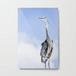 With a Patient and Watchful Eye Metal Print