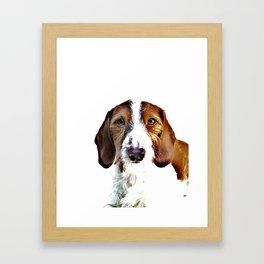 """""""Birch"""" ~ Dachshund, Weiner Dog, Doxie, everywhere!  Framed Art Print"""