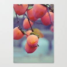 Persimmons in the Rain Canvas Print