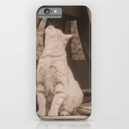 It's Love! Vintage Couple With Kitty iPhone Case