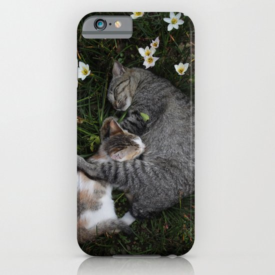 Sleep [A CAT AND A KITTEN] iPhone & iPod Case