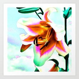 Wild Lilly Art Print