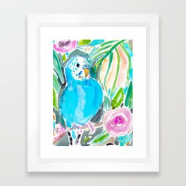 Chipper the Budgie Framed Art Print