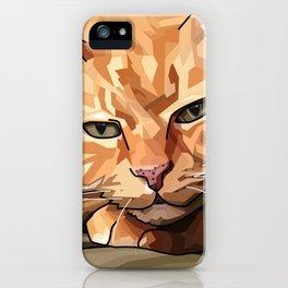 Louie Cat iPhone Case