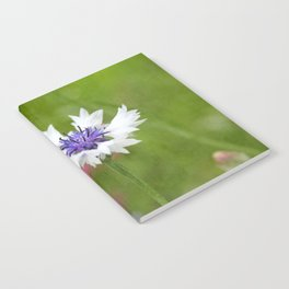 Bachelor's Button Notebook