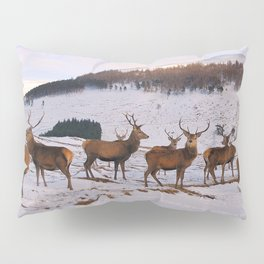 The Gathering of Stags Pillow Sham