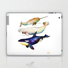 Best Buddies - Narwhal, Beluga & Orca Killer Whales Laptop & iPad Skin