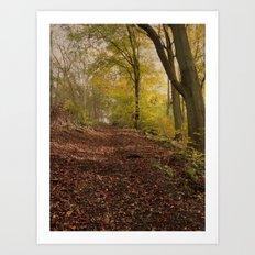 Autumn in Brantingham Woods Art Print