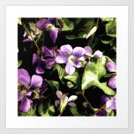 Wild Violets Art Print