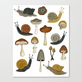 mushrooms and snails Canvas Print