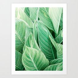 Print 164 - Leaves Art Print