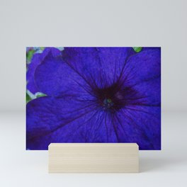 Blue Petunia Flower Macro Watercolor Mini Art Print