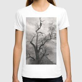 Haunting T-shirt
