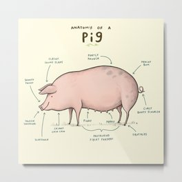 Anatomy of a Pig Metal Print
