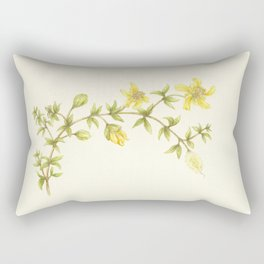Creosote Flower Illustration Rectangular Pillow