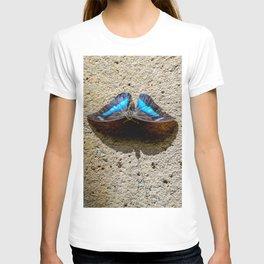 Blue Morpho Butterfly by Teresa Thompson T-shirt