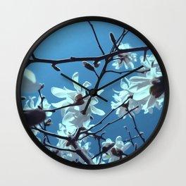 White Magnolia Bloom Blue Sky Wall Clock