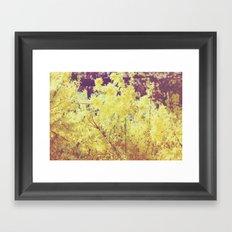 yellow flower - Forsythia Framed Art Print
