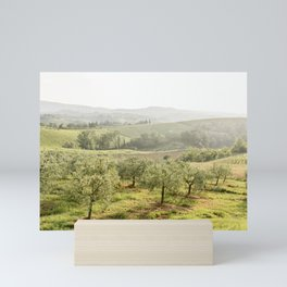 Olive trees in Tuscany, San Gimignano, Italy | Travel Photography Mini Art Print