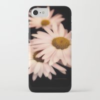 pushing daisies iPhone & iPod Cases featuring Daisies by Christine Belanger