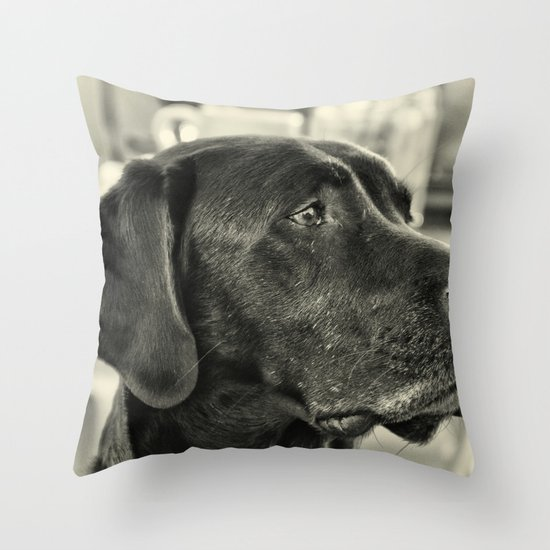 Really? Throw Pillow