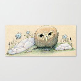 Scowling Owl Canvas Print