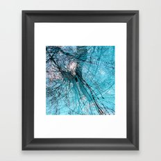 Wire Willows Framed Art Print