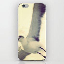 Gull, closeup  iPhone Skin