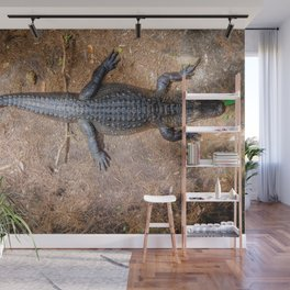 Alligator Wall Mural