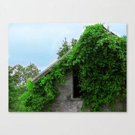 Natural Reclamation  Canvas Print