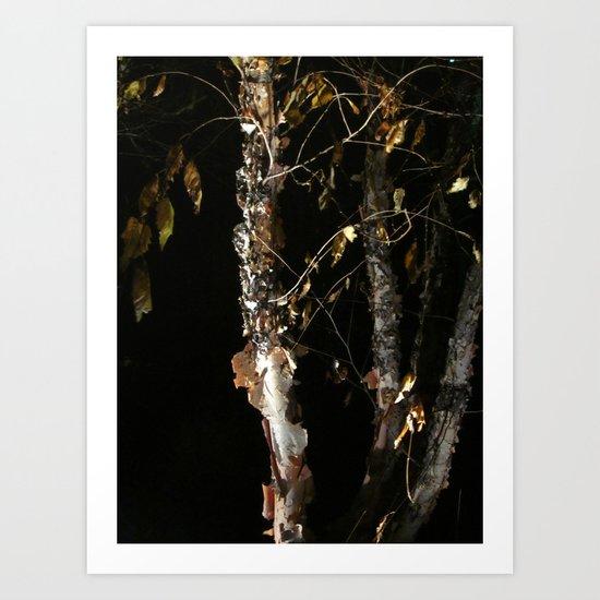 Birch A'peel Art Print