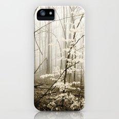 Apparition iPhone (5, 5s) Slim Case