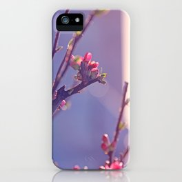 Early Spring Love 2 iPhone Case