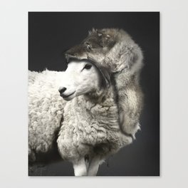 undecover in a dark Canvas Print