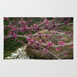 Eastern Redbud Branch Rug